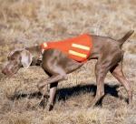 Жилет для собак Quick Spot™ Safety Dog Vest